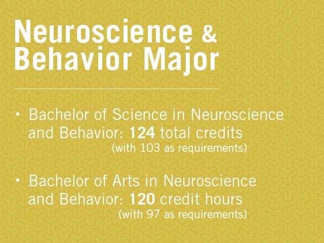 web_neuroscience major_10-2-2014