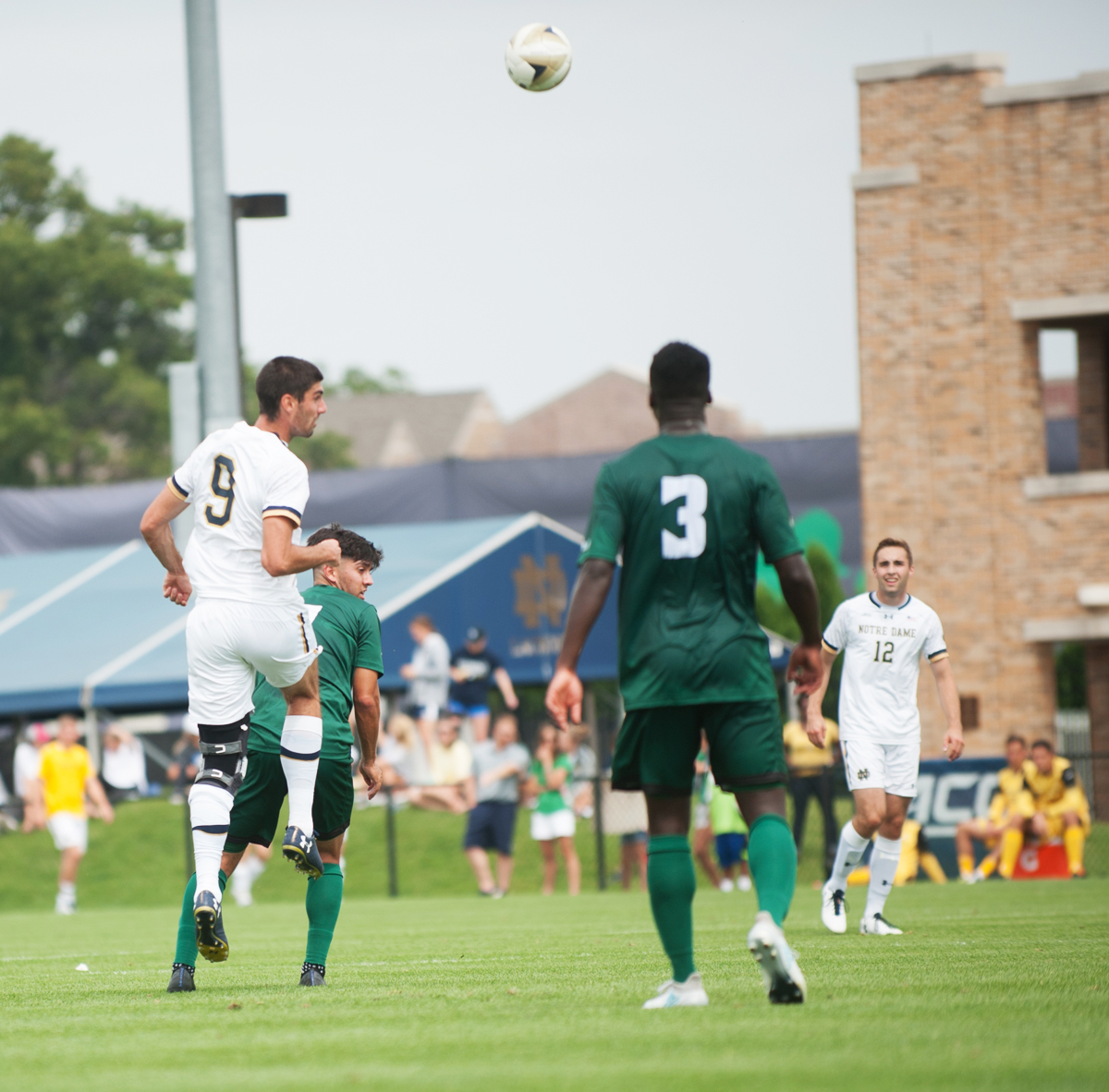Irish senior forward Jeff Farina heads the ball during Notre Dame's 2-1 win over Cal Poly on Aug. 27 at Alumni Stadium.