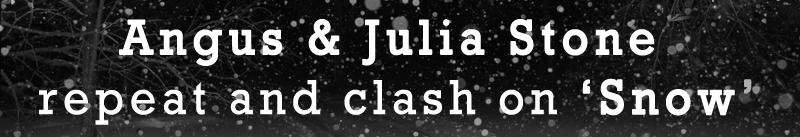 snow banner web